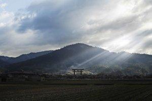 【奈良一日遊】奈良人心中的最高...